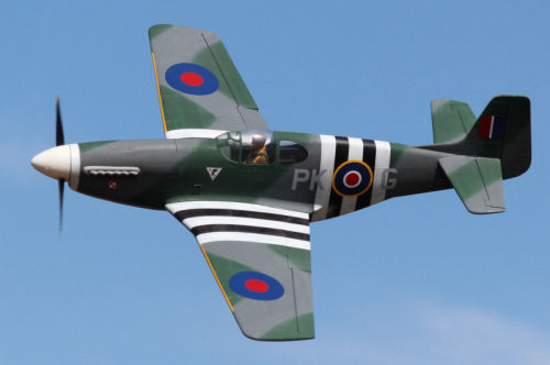 "Tony Nijhuis 61"" P-51B and D varients"